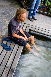 Hot spring foot bath